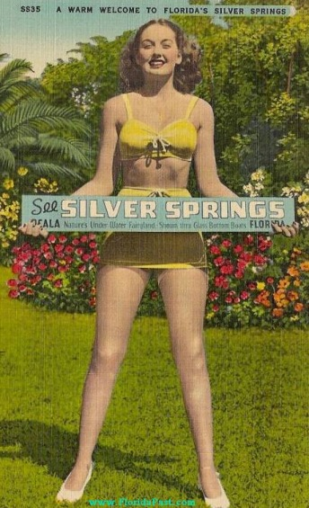 It's no wonder why Silver Springs was a BIG ATTRACTION