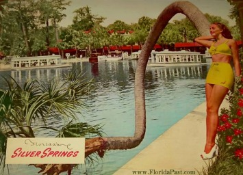A Beautiful Visit at Silver Springs, Ocala FloridaPast